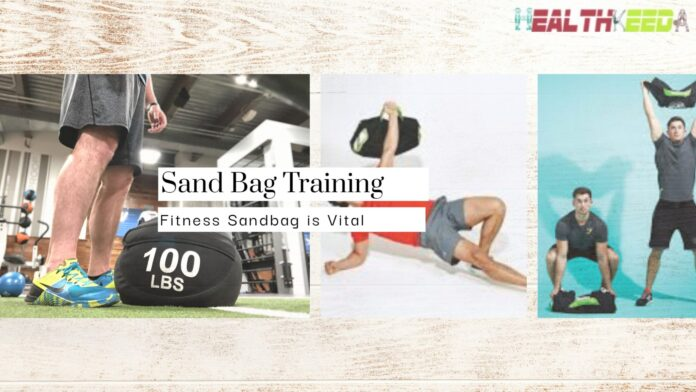 Fitness Sandbags: Why Should You Train with Them? - Finess Yoga